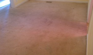 Proud of Our Work! Carpet Cleaning Company for Rental Properties Atlanta, Conyers