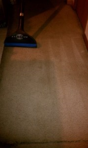 ServiceMaster in Atlanta – Carpet Cleaning Tips and Tricks – Carpet Cleaning Service