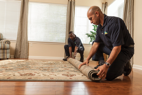 Carpet Repair in Atlanta